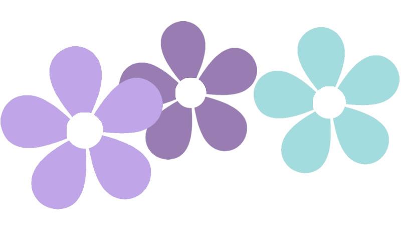 daisies-divider